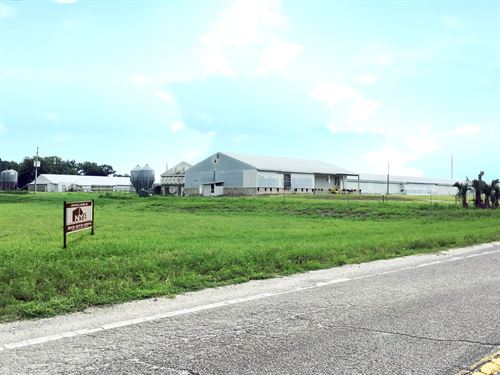 2 House Breeder Poultry Farm + Land : Zephyrhills : Pasco County : Florida