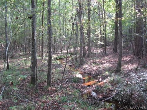 89 +/- Acres Elmore Co : Eclec : Elmore County : Alabama