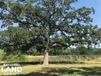 Mill Creek Ranch, Rolling, Timber : Eustace : Van Zandt County : Texas