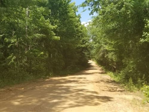 34.5 Ac, Timberland With Ponds : Sikes : Winn Parish : Louisiana