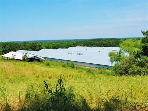 6 House Broiler Farm 97 Acres Home : Mendenhall : Simpson County : Mississippi