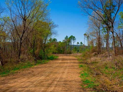 Beautiful Mountain Getaway 252 : Wilburton : Latimer County : Oklahoma