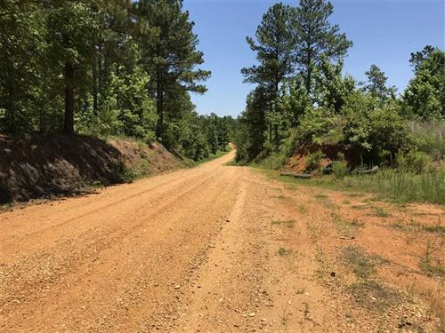 240 Acres Timber/ Recreation Prope : West Point : Clay County : Mississippi