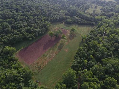 One of The Best 333 Acres of Recre : Lincoln : Benton County : Missouri