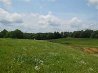 Davis 20.4 Acres - Tracts 4, 6 : Magnolia : Larue County : Kentucky