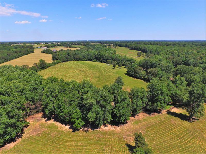 71 Acre Farm With Mountain View : Chesnee : Spartanburg County : South Carolina