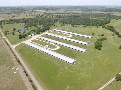 Multi-Use Ranch With Poultry Farm : Cameron : Milam County : Texas
