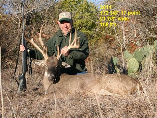 High Fenced Hunting Ranch : Cameron : Milam County : Texas
