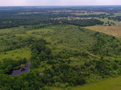 Private 94.04 Acre Getaway : Rockdale : Milam County : Texas