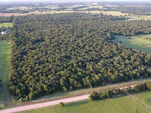 49.25 Acres, Cr 237 : Milano : Milam County : Texas