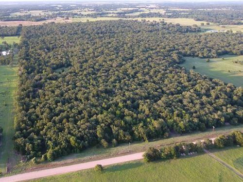 49.25 Acres, Cr 237 : Milano : Milam County : Texas