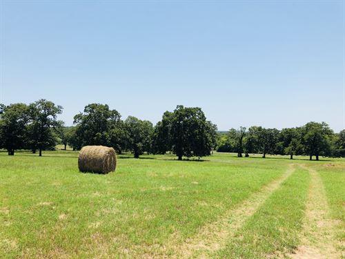 31.51 Acres, Fm 487 N : Rockdale : Milam County : Texas