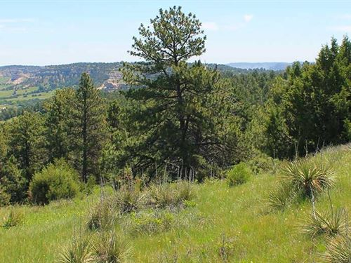 Kiowa Creek Wildlife Sanctuary : Scottsbluff : Scotts Bluff County : Nebraska