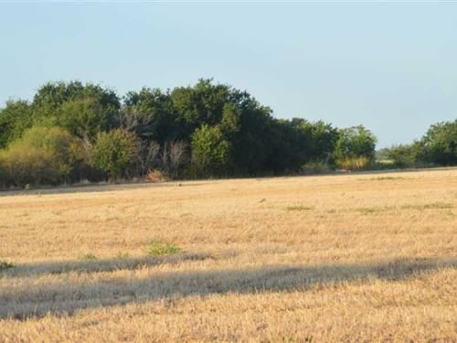 20 Acres Just 4.5 Miles From Holli : Holliday : Archer County : Texas