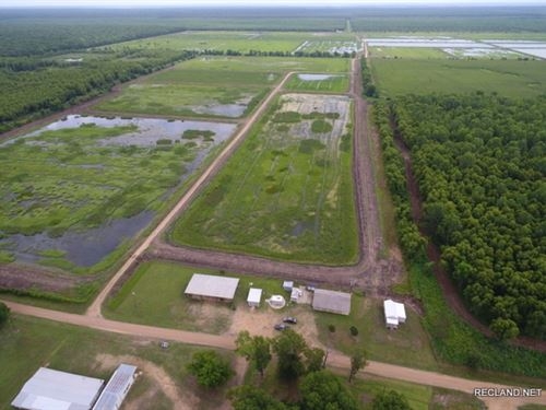 400 Ac, Duck & Deer Hunting Wi : Jonesville : Concordia Parish : Louisiana