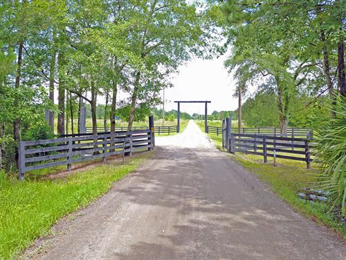 106.89 Acres- Wildlife Way : Callahan : Nassau County : Florida