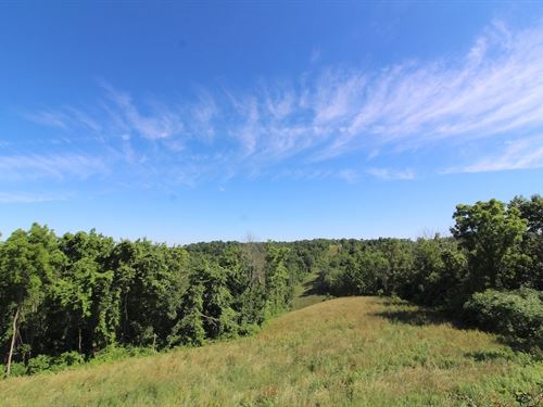 Pugh Ridge Rd - 82 Acres : Alledonia : Belmont County : Ohio
