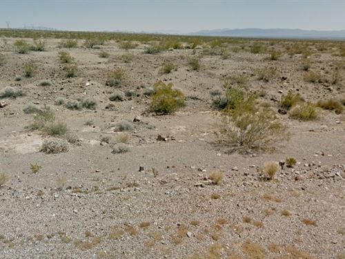 Mohave County, Az $50,000 : Mohave Valley : Mohave County : Arizona