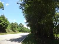 13.82 Acres &Ldquo : Liberty : Anderson County : South Carolina