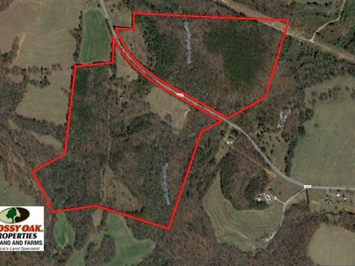 83.5 Acres of Timber And Pasture : Lawndale : Cleveland County : North Carolina