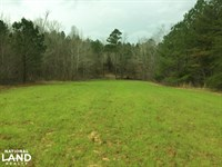 Tuscumbia Hunting And Timber Invest : Tuscumbia : Colbert County : Alabama