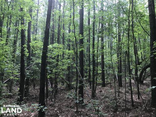 Seven Pines Recreational Estate : Barnwell : South Carolina