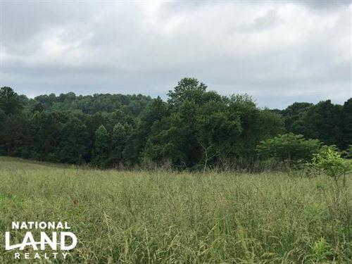 30 Acres Fenced Pasture : Carnesville : Franklin County : Georgia