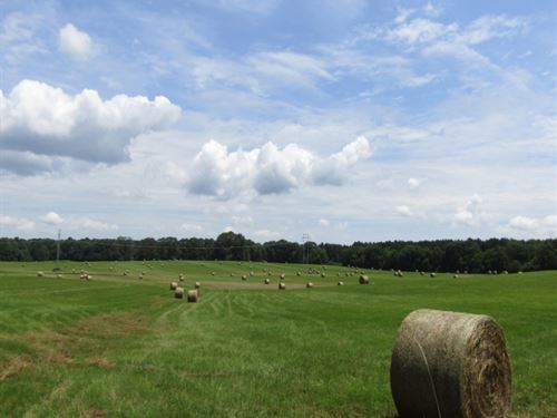 123 Acres In Scott County : Harperville : Scott County : Mississippi