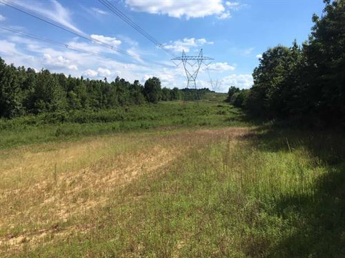 Hunting Land For Sale Northern Madi : Camden : Madison County : Mississippi