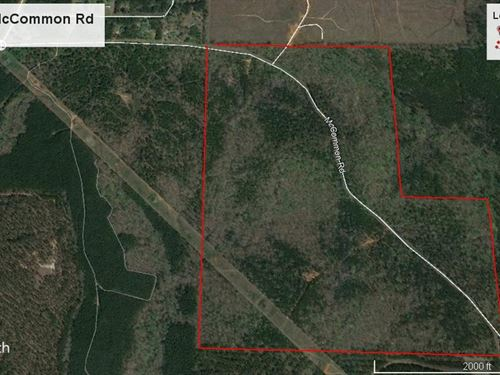180 Acre Trammell Tract : Forsyth : Monroe County : Georgia