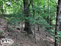 32 Acres Hunting Tract Near Winona : Winona : Montgomery County : Mississippi