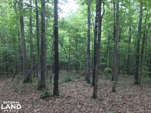 40 Acre Residential Development : Alexander : Saline County : Arkansas
