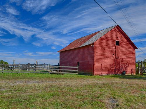 Boxwood Farm : Dillwyn : Buckingham County : Virginia