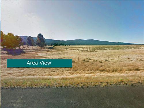 39 Acres In Nubieber, Ca : Nubieber : Lassen County : California