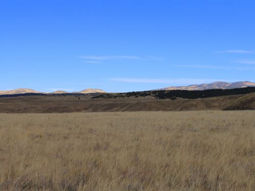 Sheep Creek Land : Westcliffe : Custer County : Colorado
