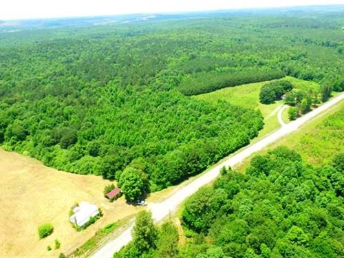 109 Acre Whitehouse Farm in Marion : Whitehouse : Marion County : Alabama