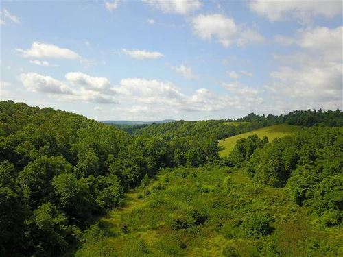 40 Acres of Residential, Recre : Marshall : Searcy County : Arkansas