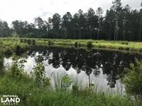 Vandross Bay Hunting Retreat : Hemingway : Georgetown County : South Carolina