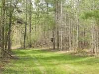 Lake Country Timber & Hunting : Eatonton : Putnam County : Georgia