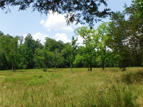 57Ac, Creek, Spring, Pasture, Fence : Hilham : Overton County : Tennessee
