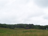 40 Acres In Hart County, Ky : Bonnieville : Hart County : Kentucky