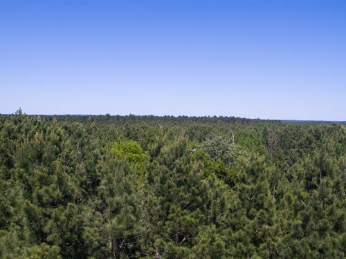 Indian Rock - 1685 Acres : Gilmer : Upshur County : Texas