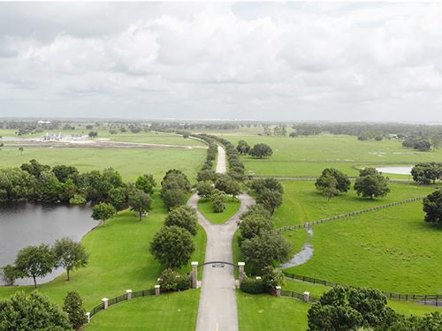 Oak Ridge Ranch In Okeechobee : Okeechobee : Martin County : Florida