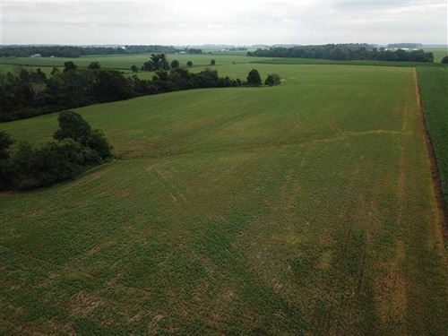 42 Acres 36 Acres Tillable, Hwy 1 : Bath : Franklin County : Indiana