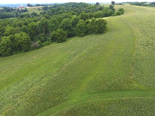 Driftless Area Acreage With Views : Wauzeka : Crawford County : Wisconsin