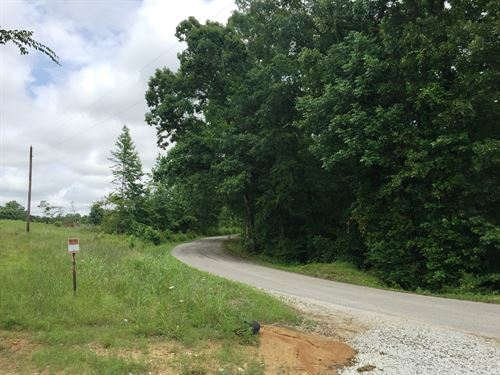 Tract 1576-Sealed Bid Land Sale : Reagan : Henderson County : Tennessee