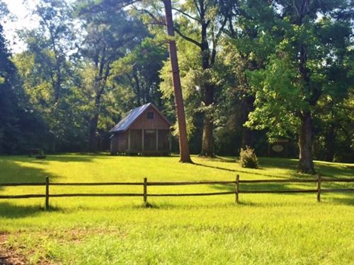 88 Acres Cabin Okatoma River Proper : Seminary : Covington County : Mississippi