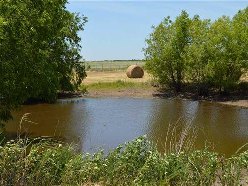 20 Acres of Ag Exempt Land For Sal : Whitesboro : Grayson County : Texas