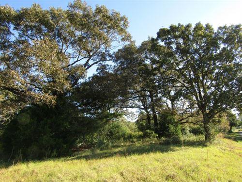 68 Acres In Scott County : Walnut Grove : Scott County : Mississippi