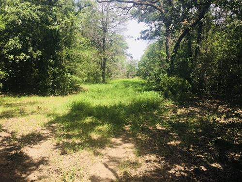 Nice 56 Acres In The Country : Lexington : Lee County : Texas